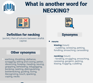 necking, synonym necking, another word for necking, words like necking, thesaurus necking