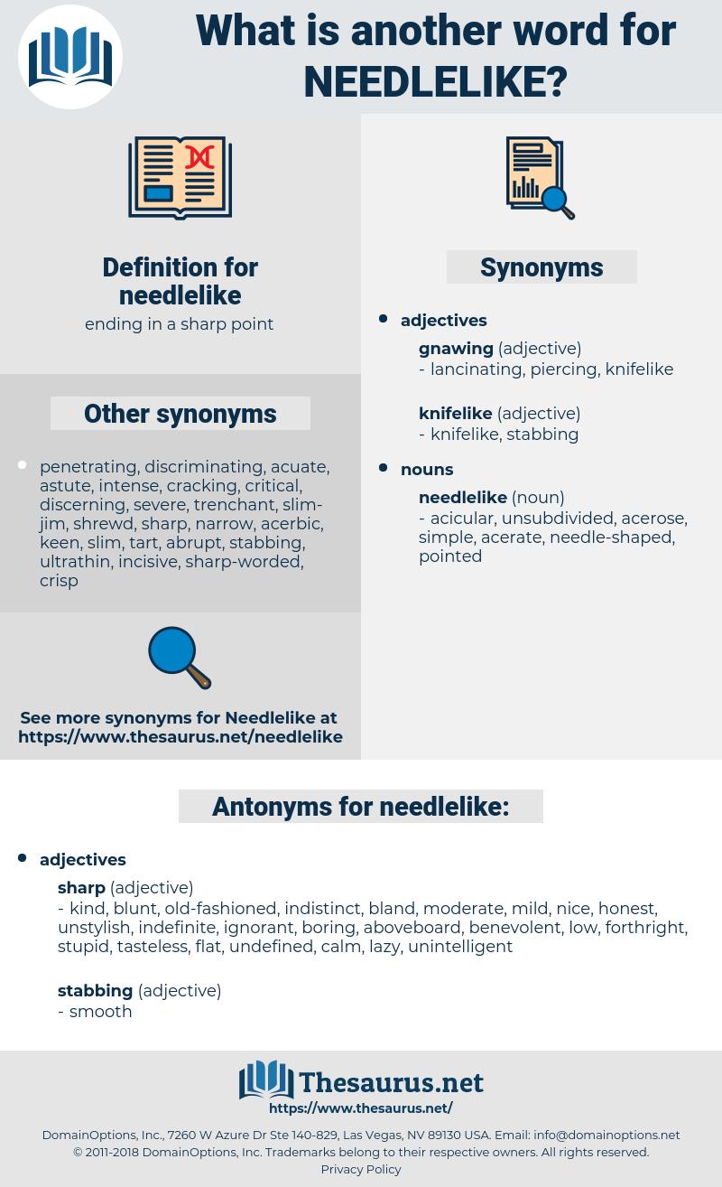 needlelike, synonym needlelike, another word for needlelike, words like needlelike, thesaurus needlelike