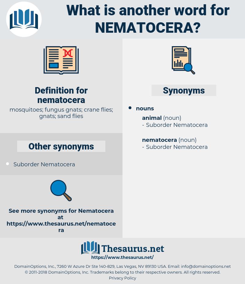 nematocera, synonym nematocera, another word for nematocera, words like nematocera, thesaurus nematocera