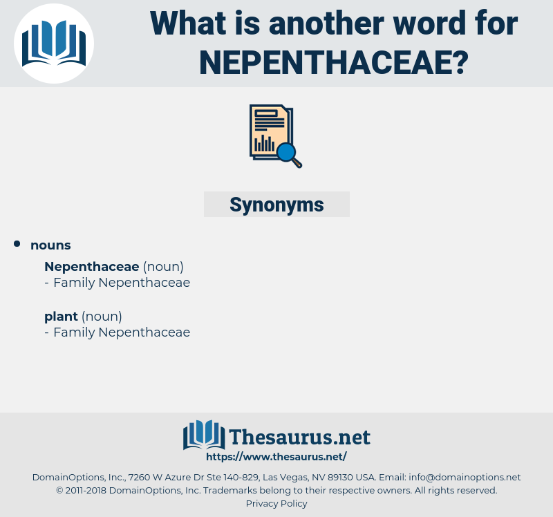nepenthaceae, synonym nepenthaceae, another word for nepenthaceae, words like nepenthaceae, thesaurus nepenthaceae