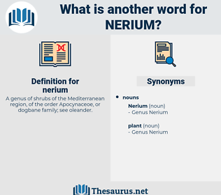 nerium, synonym nerium, another word for nerium, words like nerium, thesaurus nerium