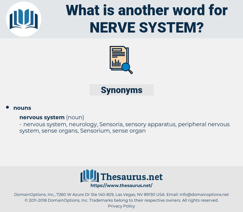 nerve system, synonym nerve system, another word for nerve system, words like nerve system, thesaurus nerve system