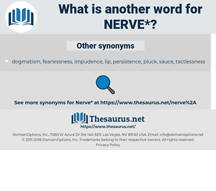 nerve, synonym nerve, another word for nerve, words like nerve, thesaurus nerve