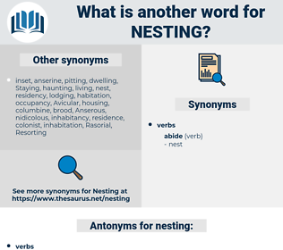 nesting, synonym nesting, another word for nesting, words like nesting, thesaurus nesting