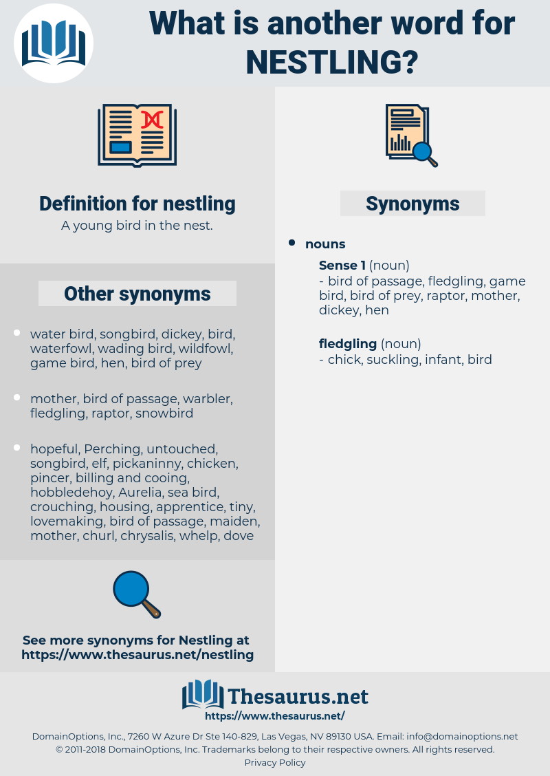 nestling, synonym nestling, another word for nestling, words like nestling, thesaurus nestling