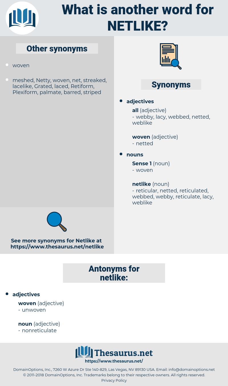netlike, synonym netlike, another word for netlike, words like netlike, thesaurus netlike
