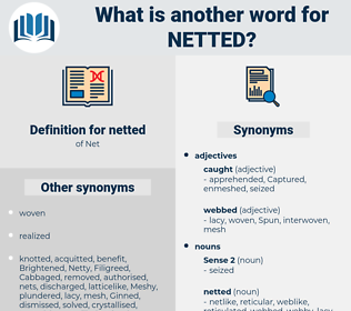 netted, synonym netted, another word for netted, words like netted, thesaurus netted