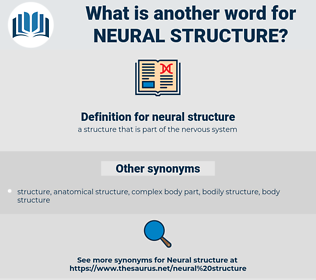 neural structure, synonym neural structure, another word for neural structure, words like neural structure, thesaurus neural structure