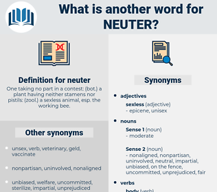 neuter, synonym neuter, another word for neuter, words like neuter, thesaurus neuter
