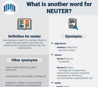 neuter, synonym neuter, another word for neuter, words like neuter, thesaurus neuter