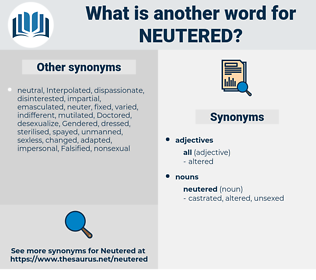neutered, synonym neutered, another word for neutered, words like neutered, thesaurus neutered
