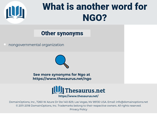 NGO, synonym NGO, another word for NGO, words like NGO, thesaurus NGO