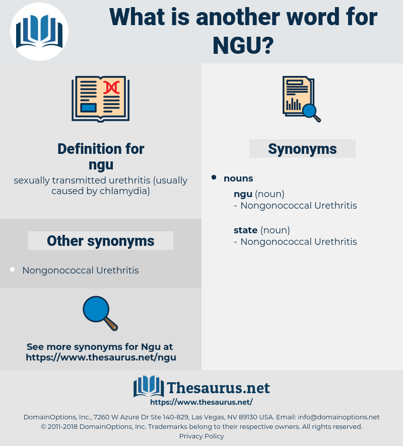 ngu, synonym ngu, another word for ngu, words like ngu, thesaurus ngu