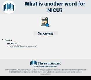 nicu, synonym nicu, another word for nicu, words like nicu, thesaurus nicu