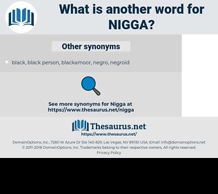 nigga, synonym nigga, another word for nigga, words like nigga, thesaurus nigga
