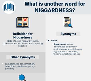 Niggardness, synonym Niggardness, another word for Niggardness, words like Niggardness, thesaurus Niggardness