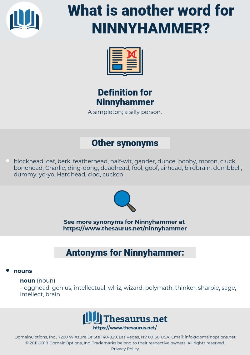 Ninnyhammer, synonym Ninnyhammer, another word for Ninnyhammer, words like Ninnyhammer, thesaurus Ninnyhammer