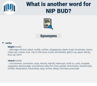 nip bud, synonym nip bud, another word for nip bud, words like nip bud, thesaurus nip bud