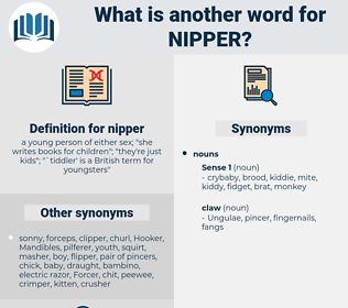 nipper, synonym nipper, another word for nipper, words like nipper, thesaurus nipper