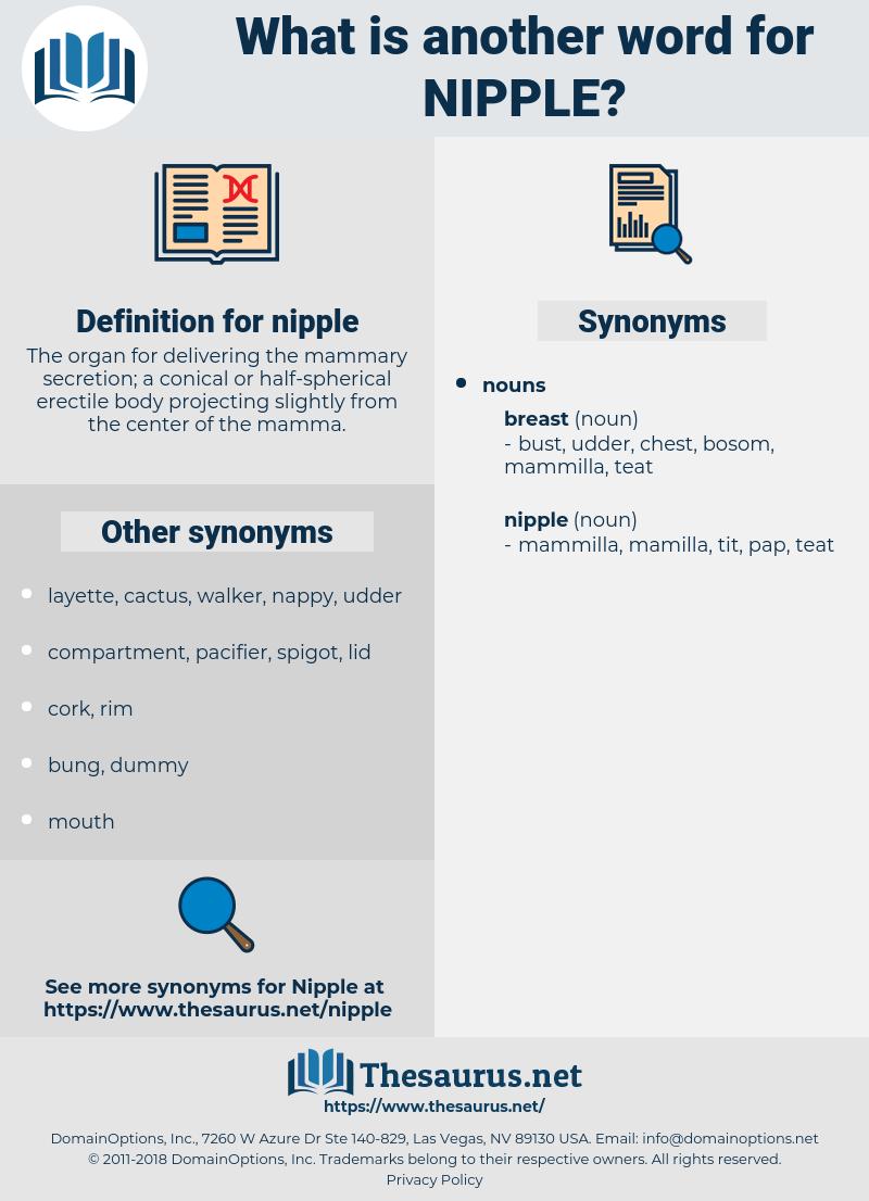 nipple, synonym nipple, another word for nipple, words like nipple, thesaurus nipple