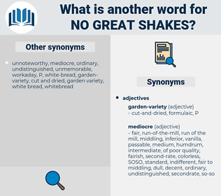 no great shakes, synonym no great shakes, another word for no great shakes, words like no great shakes, thesaurus no great shakes