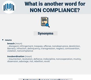 non-compliance, synonym non-compliance, another word for non-compliance, words like non-compliance, thesaurus non-compliance
