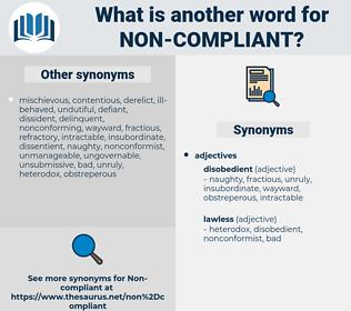 non-compliant, synonym non-compliant, another word for non-compliant, words like non-compliant, thesaurus non-compliant