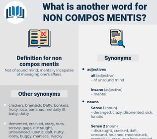 non compos mentis, synonym non compos mentis, another word for non compos mentis, words like non compos mentis, thesaurus non compos mentis