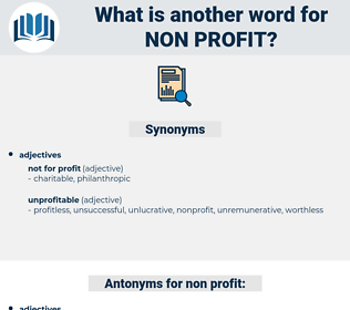 non-profit, synonym non-profit, another word for non-profit, words like non-profit, thesaurus non-profit