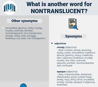 nontranslucent, synonym nontranslucent, another word for nontranslucent, words like nontranslucent, thesaurus nontranslucent