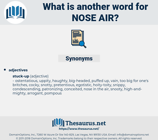 nose air, synonym nose air, another word for nose air, words like nose air, thesaurus nose air