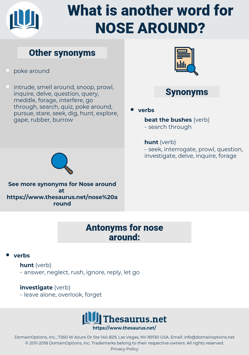 nose around, synonym nose around, another word for nose around, words like nose around, thesaurus nose around