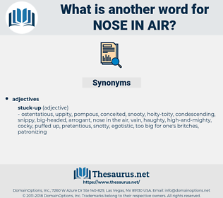 nose in air, synonym nose in air, another word for nose in air, words like nose in air, thesaurus nose in air