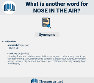 nose in the air, synonym nose in the air, another word for nose in the air, words like nose in the air, thesaurus nose in the air
