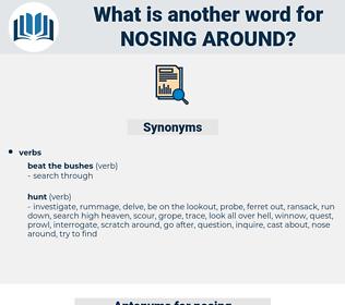 nosing around, synonym nosing around, another word for nosing around, words like nosing around, thesaurus nosing around