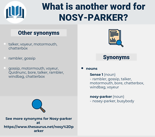 nosy-parker, synonym nosy-parker, another word for nosy-parker, words like nosy-parker, thesaurus nosy-parker