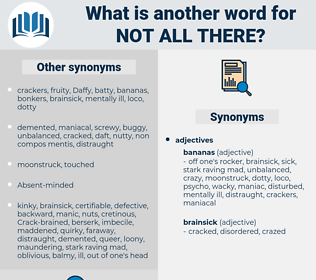 not all there, synonym not all there, another word for not all there, words like not all there, thesaurus not all there
