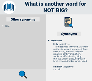 not big, synonym not big, another word for not big, words like not big, thesaurus not big
