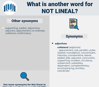 not lineal, synonym not lineal, another word for not lineal, words like not lineal, thesaurus not lineal
