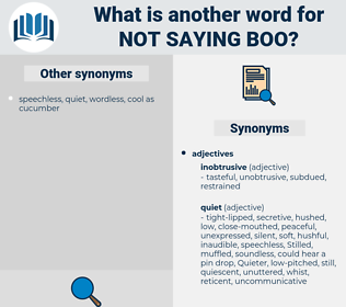 not saying boo, synonym not saying boo, another word for not saying boo, words like not saying boo, thesaurus not saying boo