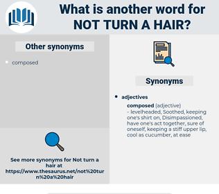 not turn a hair, synonym not turn a hair, another word for not turn a hair, words like not turn a hair, thesaurus not turn a hair