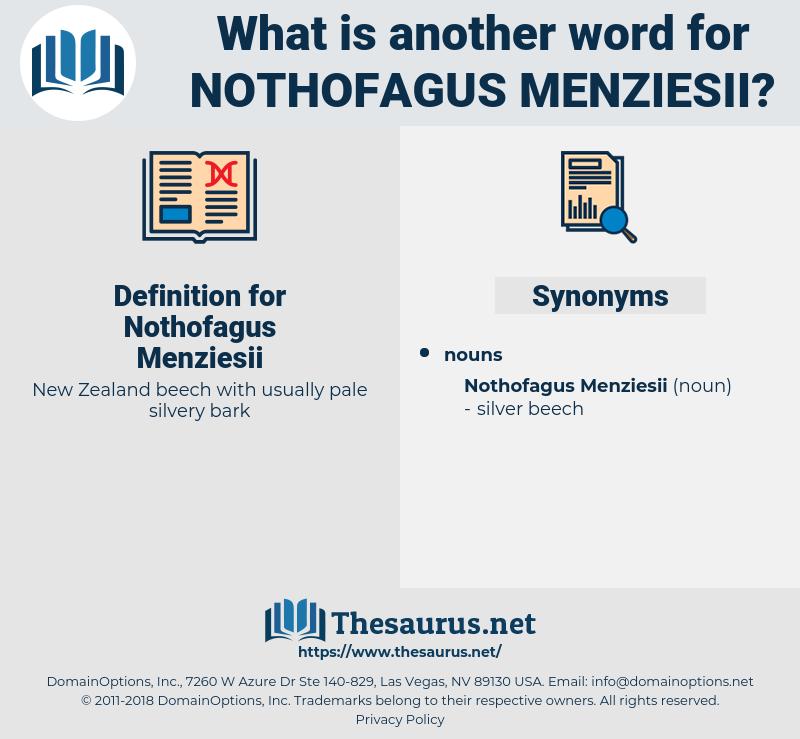 Nothofagus Menziesii, synonym Nothofagus Menziesii, another word for Nothofagus Menziesii, words like Nothofagus Menziesii, thesaurus Nothofagus Menziesii
