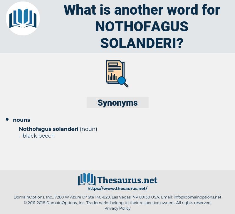 Nothofagus Solanderi, synonym Nothofagus Solanderi, another word for Nothofagus Solanderi, words like Nothofagus Solanderi, thesaurus Nothofagus Solanderi