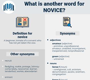 novice, synonym novice, another word for novice, words like novice, thesaurus novice