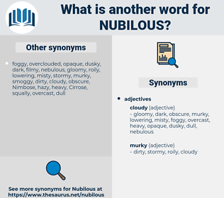 Nubilous, synonym Nubilous, another word for Nubilous, words like Nubilous, thesaurus Nubilous