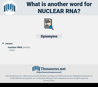 Nuclear Rna, synonym Nuclear Rna, another word for Nuclear Rna, words like Nuclear Rna, thesaurus Nuclear Rna