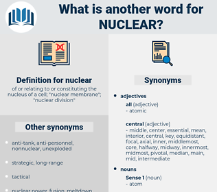 nuclear, synonym nuclear, another word for nuclear, words like nuclear, thesaurus nuclear