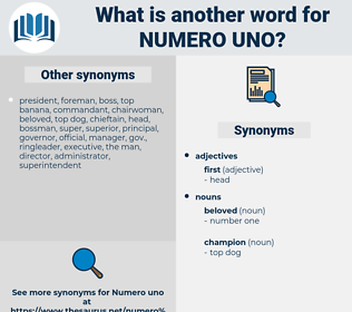 numero uno, synonym numero uno, another word for numero uno, words like numero uno, thesaurus numero uno