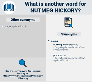nutmeg hickory, synonym nutmeg hickory, another word for nutmeg hickory, words like nutmeg hickory, thesaurus nutmeg hickory