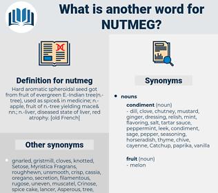 nutmeg, synonym nutmeg, another word for nutmeg, words like nutmeg, thesaurus nutmeg